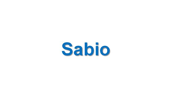 SABIO - Soccer Analysis Based on Inference Outputs