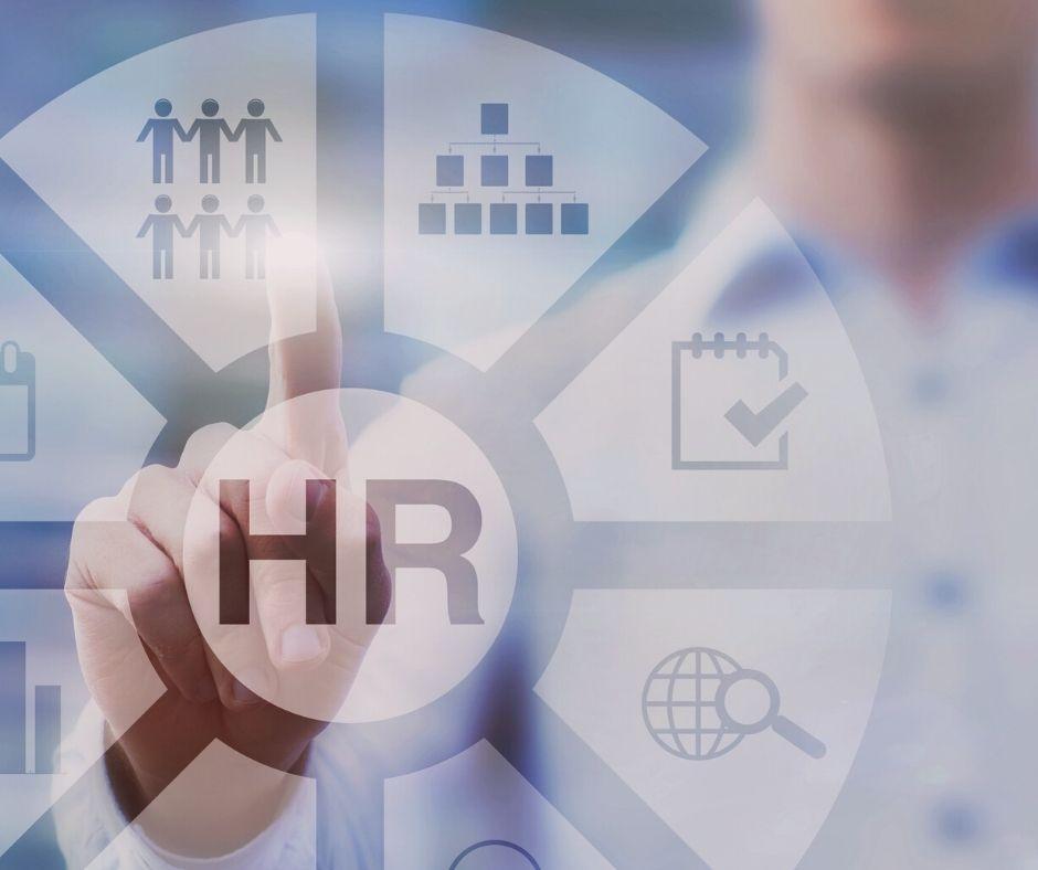 Cómo puede utilizar el coaching de empleabilidad para aumentar sus posibilidades de conseguir el trabajo que desea