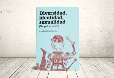 Libro - Diversidad, Identidad, Sexualidad (un palimpsesto) | Editorial Universidad Icesi