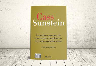 Portada Colección: Co-ediciones Cass Stein Acuerdos Carentes 2010 - Publicaciones ICESI