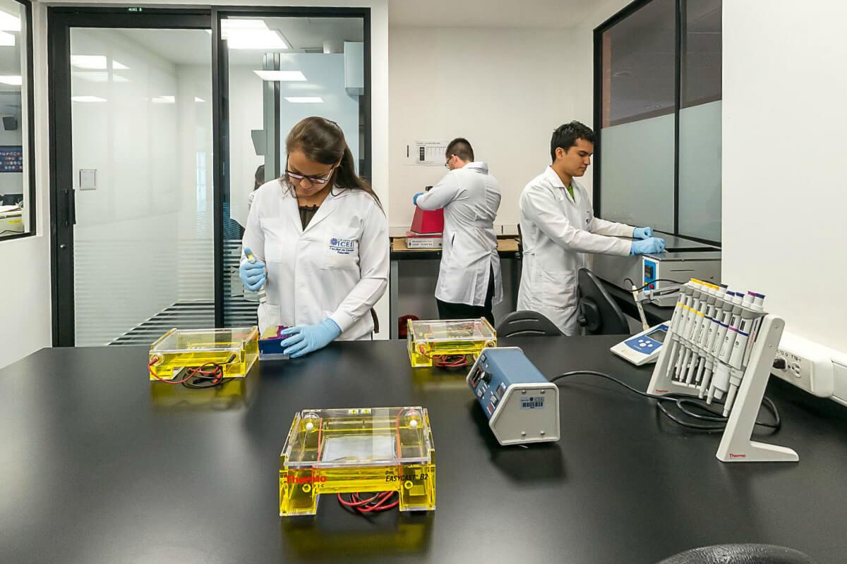 Laboratorios de Docencia