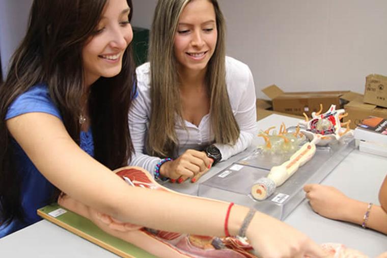lab experimentacion pedagogica