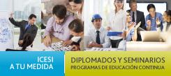 Programas de diplomado